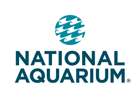National Aquarium Coupon go to mcaccounts.ml Total 19 active mcaccounts.ml Promotion Codes & Deals are listed and the latest one is updated on December 03, ; 8 coupons and 11 deals which offer up to 50% Off, $10 Off, Free Shipping and extra discount, make sure to use one of them when you're shopping for mcaccounts.ml; Dealscove promise you'll get.
